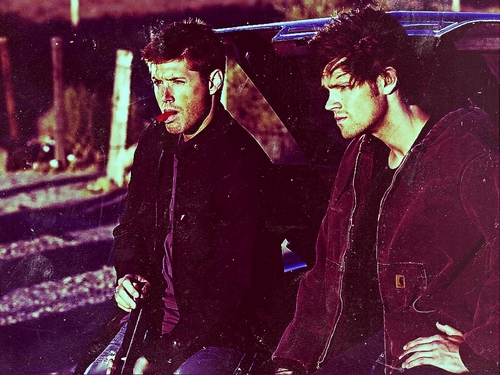 The Winchesters वॉलपेपर entitled Winchester <3