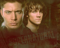 Winchester &lt;3 - the-winchesters wallpaper