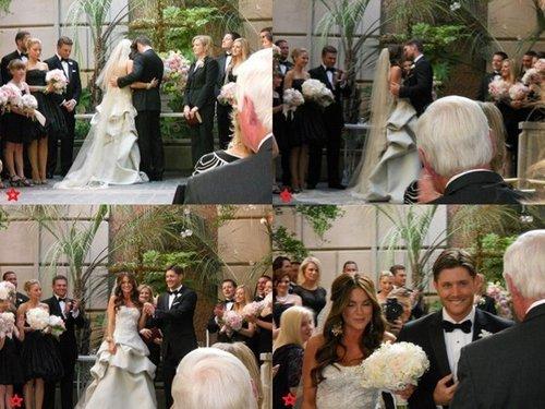 danneel harris wedding foto
