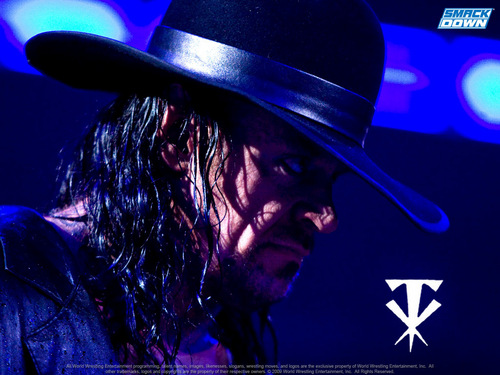 WWE kertas dinding called undertaker