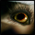 werewolf eye - tyler-lockwood photo
