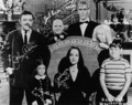Addams 1964 Autographs - addams-family photo