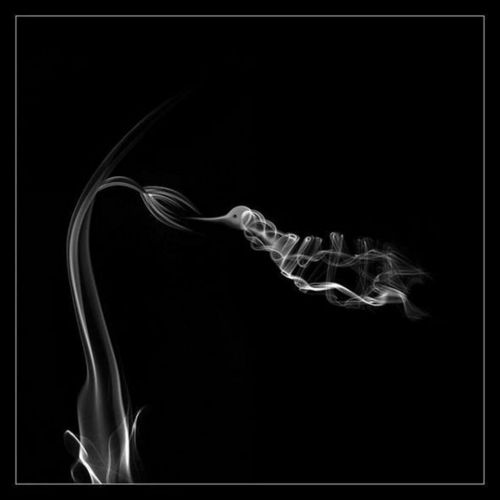 Artistic-smoke Foto for everyone here <3