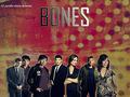 Bones Cast