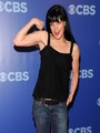 CBS Upfront - ncis photo