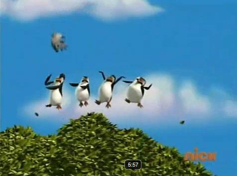 Penguins of Madagascar wallpaper titled Chasing Frankie the Pigeon