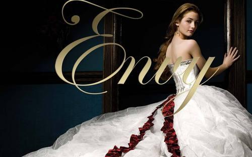 Envy book cover