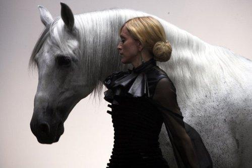 HORSE bởi Klein