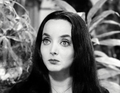 Morticia Addams - addams-family photo