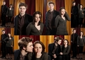 Robert and Kristen - twilight-series photo