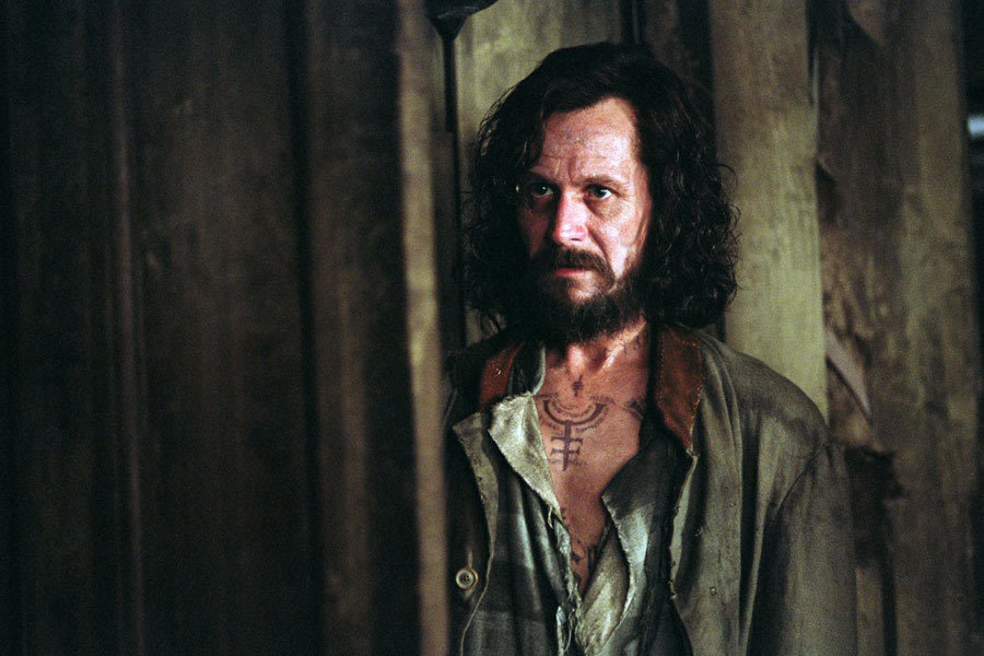 Moony & Padfoot images Sirius Black HD wallpaper and ...