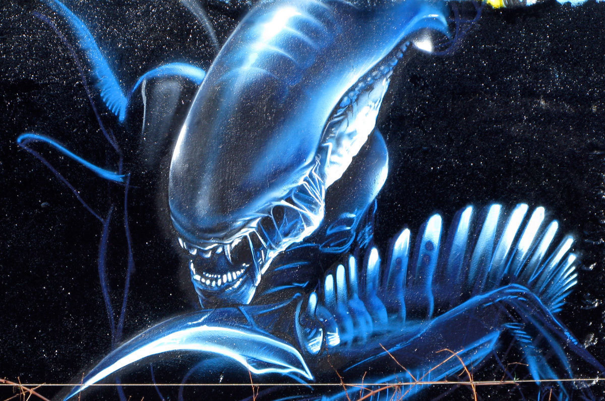xenomorphs images xenomorphs hd wallpaper and background photos