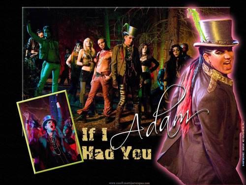 Adam- If I Had te wallpaper