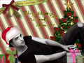 All i want for christmas - twilight-series photo