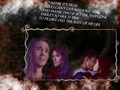 BL 313 Wall - brucas-and-chophia wallpaper