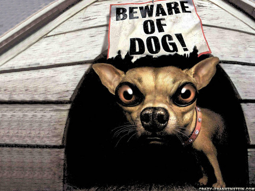 Beware of dog !