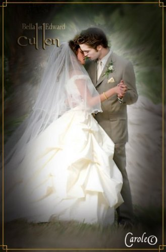 Breaking dawn-the wedding