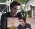 Does Edward look similar in Eclipse to Twilight??? - twilight-series photo