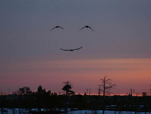 God's nature smiling :)