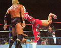 HBK Sweet Chin Music
