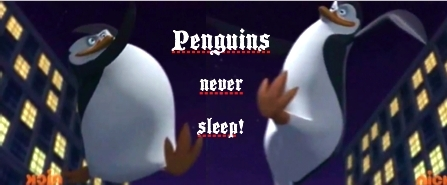 Penguins Never Sleep!