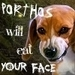 Porthos the Beagle - beagles icon