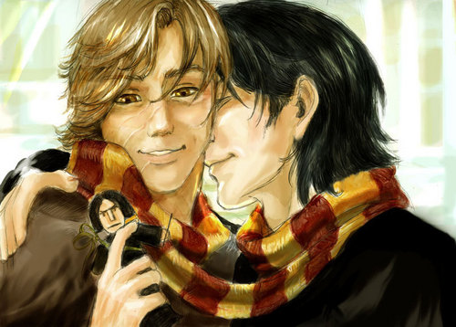 Remus and Sirius - With a Snape doll.