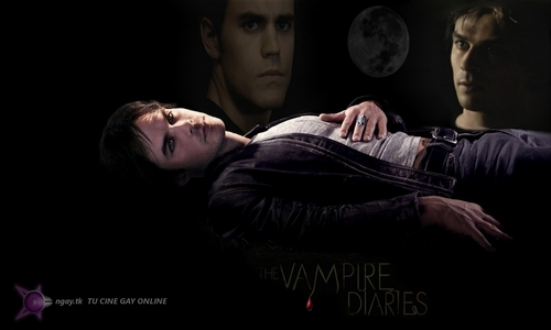 The Vampire Diaries پیپر وال entitled THE VAMPIRE DIARIES ONGAY TU CINE GAY ONLINE