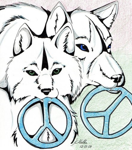Peace Signs wallpaper titled Wolf_Peace