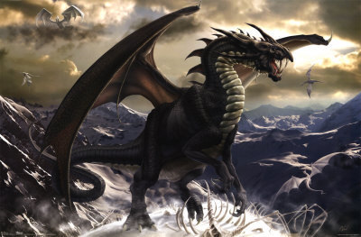 Dragons Are Real Images Dragon Wallpaper And Background Photos