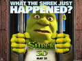 shrek-forever-after - edxcdfxfnb wallpaper