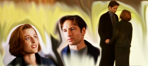 The X-Files achtergrond entitled fight the future