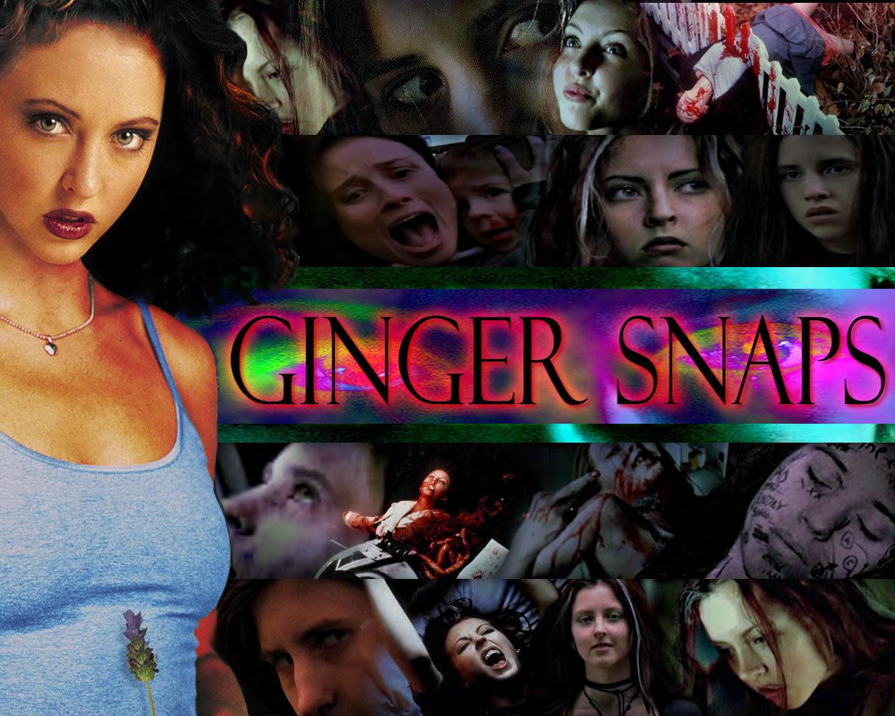 Ginger Snaps 4