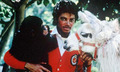 * AMAZING MICHAEL * - michael-jackson photo
