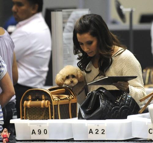 Ashley @ LAX Airport May 27