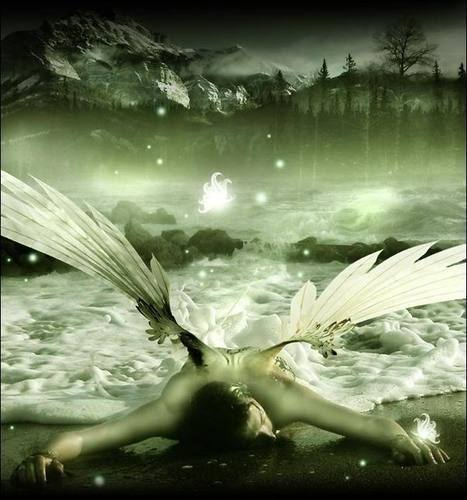 Beautiful Fallen Angel