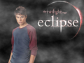 Eclipse Wall - eclipse-movie wallpaper