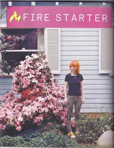 Hayley in NYLON magazine
