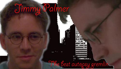 Jimmy Palmer banner