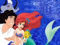 Little Mermaid - the-little-mermaid wallpaper