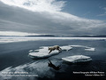 National Geographic Photos