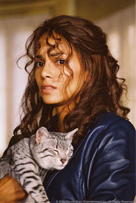 catwoman 2004 imdb autos post