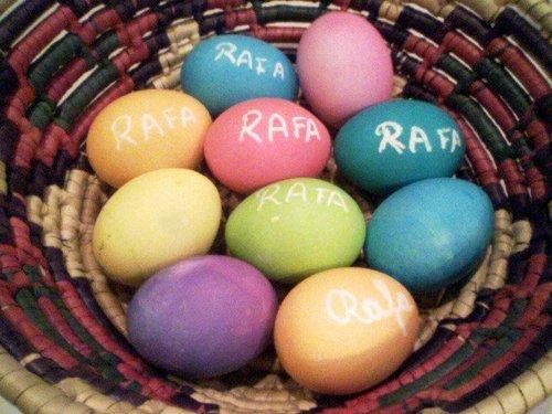 Rafa eggs