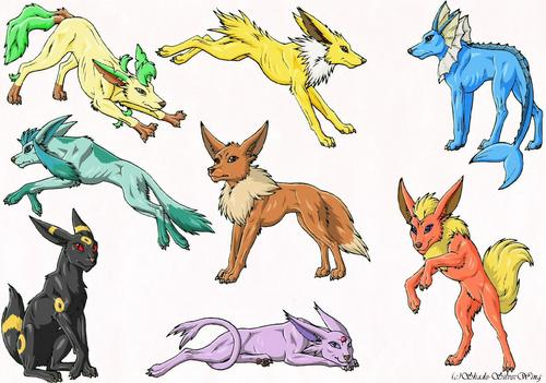 Pokémon fond d'écran entitled Real like Eevee Evolutions