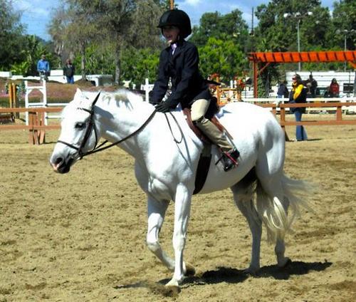 Riding Champion