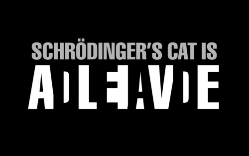 The Big Bang Theory wallpaper titled Schrodinger's Cat