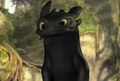 -Night-Fury - how-to-train-your-dragon photo