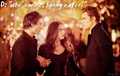 Delena - the-vampire-diaries-couples fan art
