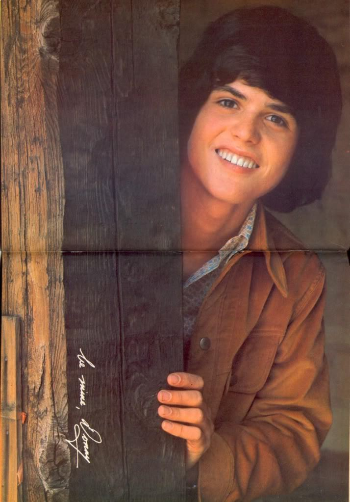 Donny Osmond Images HD Wallpaper And Background Photos