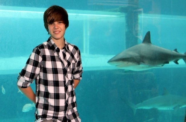 justin bieber family photos. justin bieber family photos.